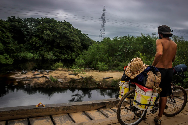 Viajante de bicicleta observando jacarés na Estrada Parque do Pantanal