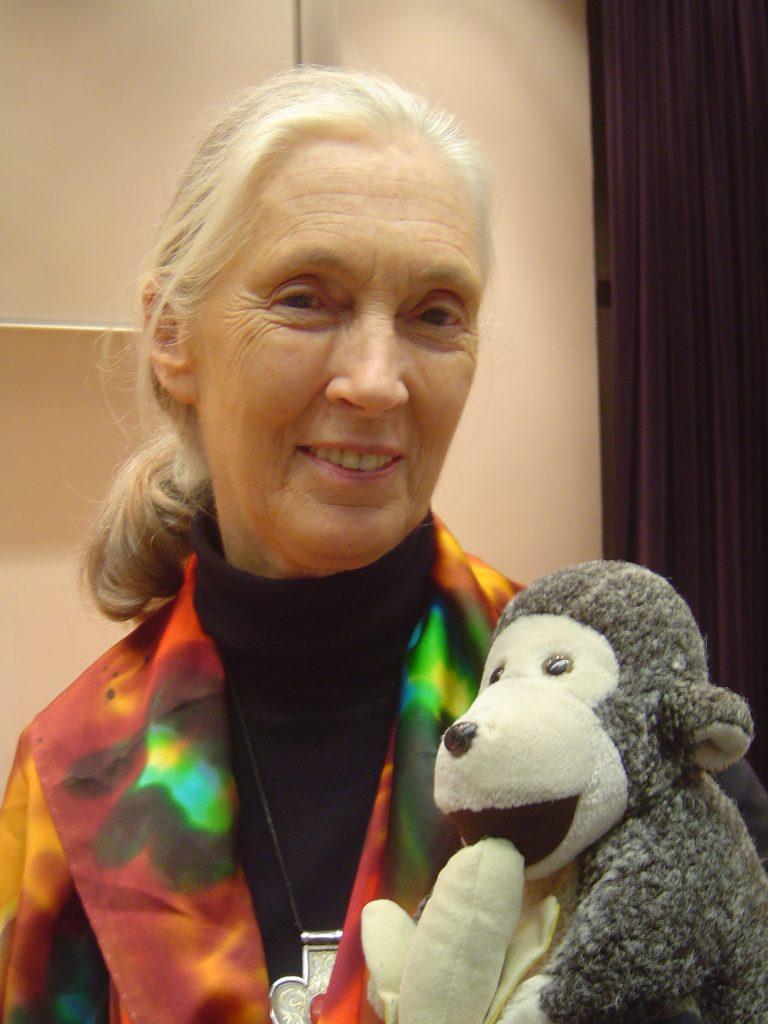 Retrato Jane Goodall